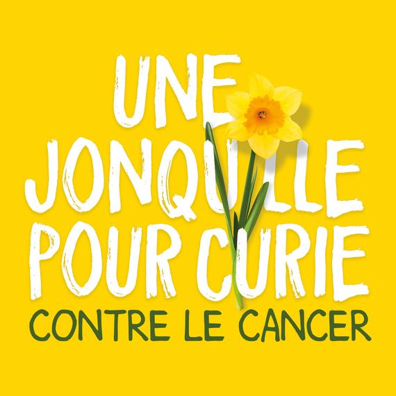 Une jonquille pour Curie